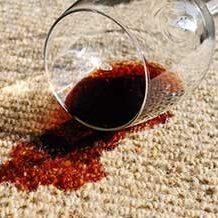 Carpet cleaner stainGo Melbourne Australia